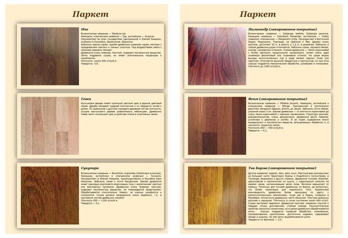 макет страниц каталога продукции